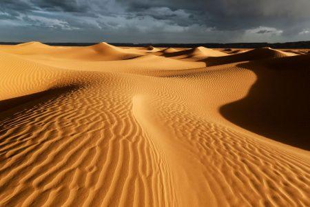 ¿Qué es el desierto?